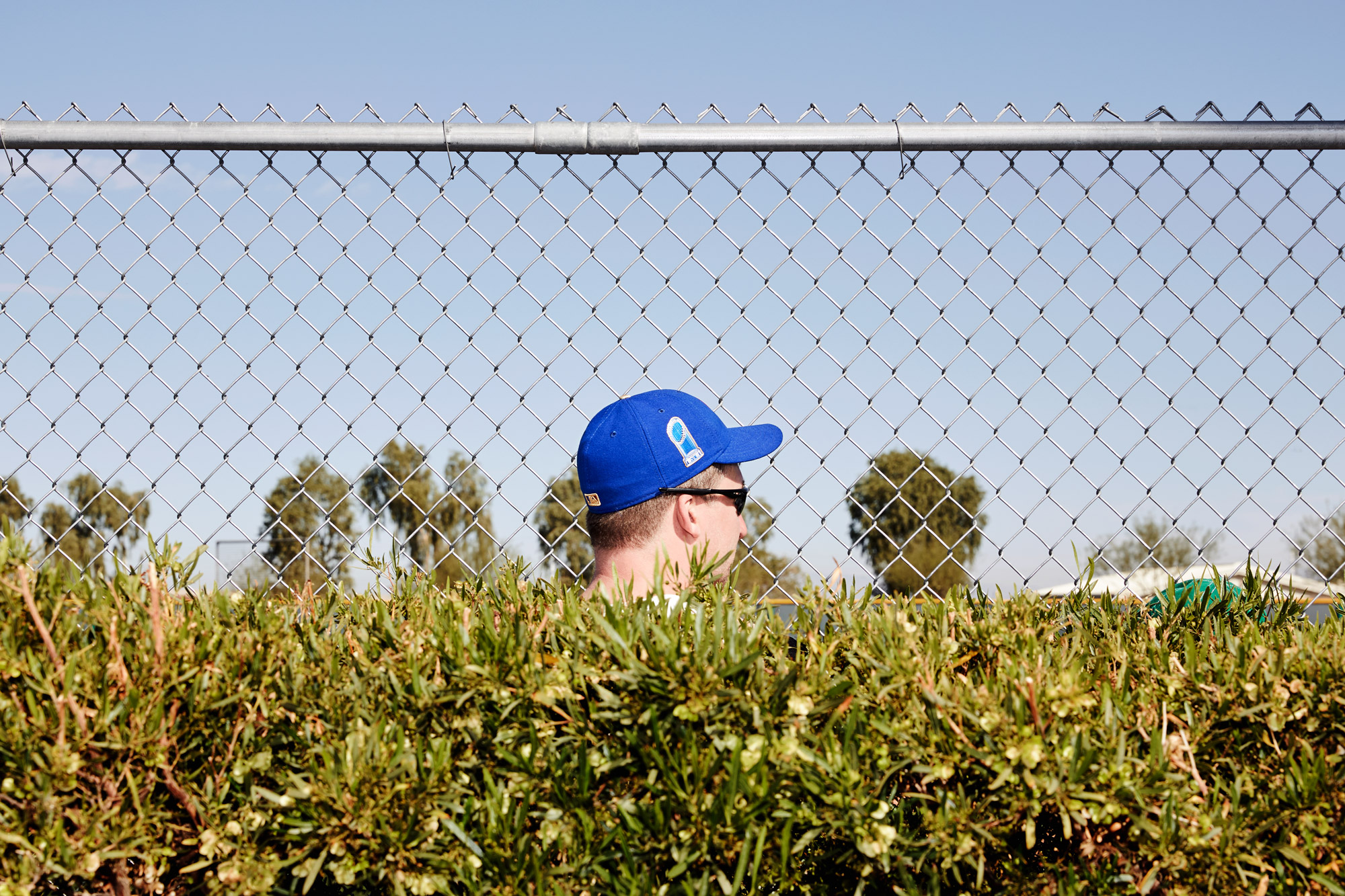Sports Fans - Chicago Cubs Spring Training